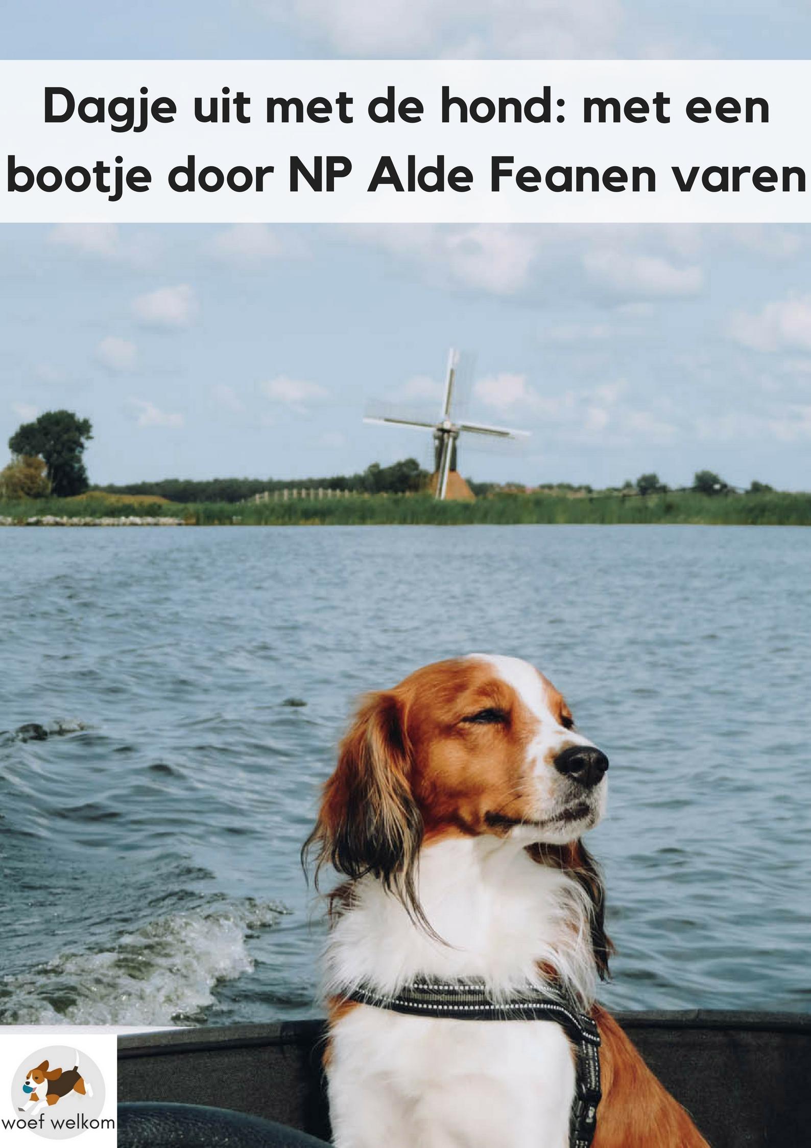 Dagje uit in Nederland, hond mee, bootje varen Alde Feanen, Friesland - Woef Welkom