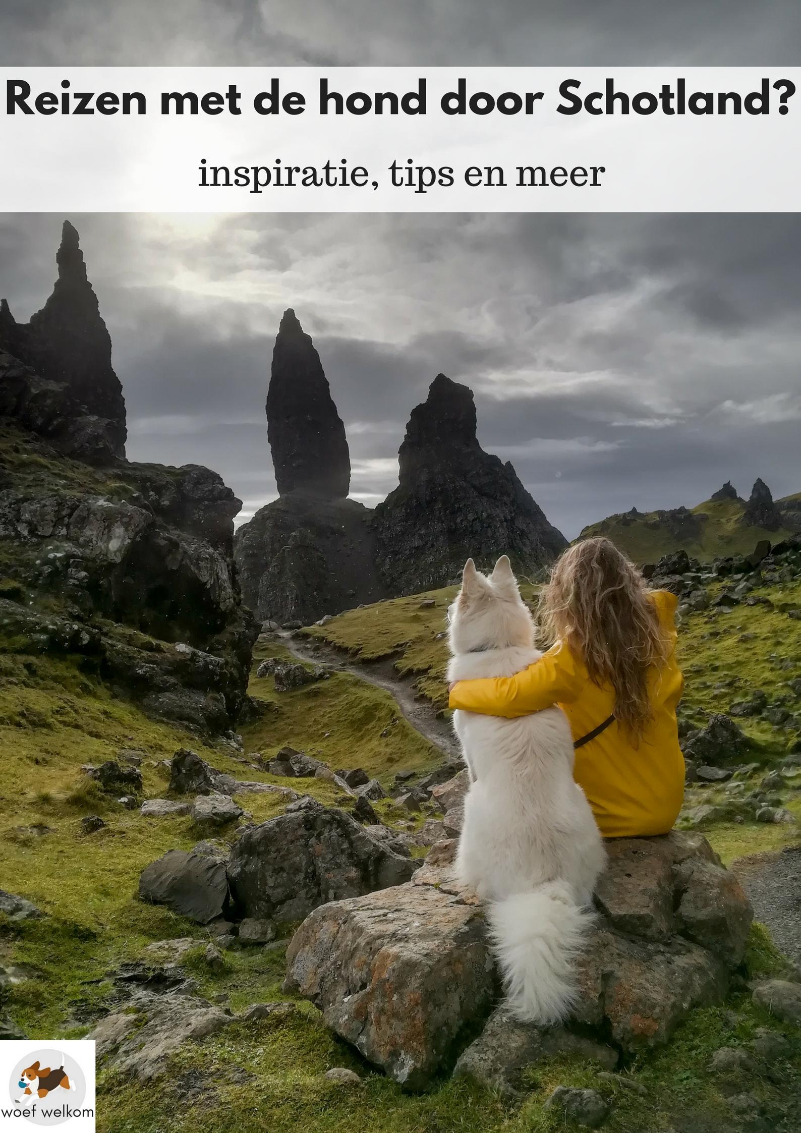 Reizen met de hond door Schotland? Inspiratie, tips en meer op Woef Welkom