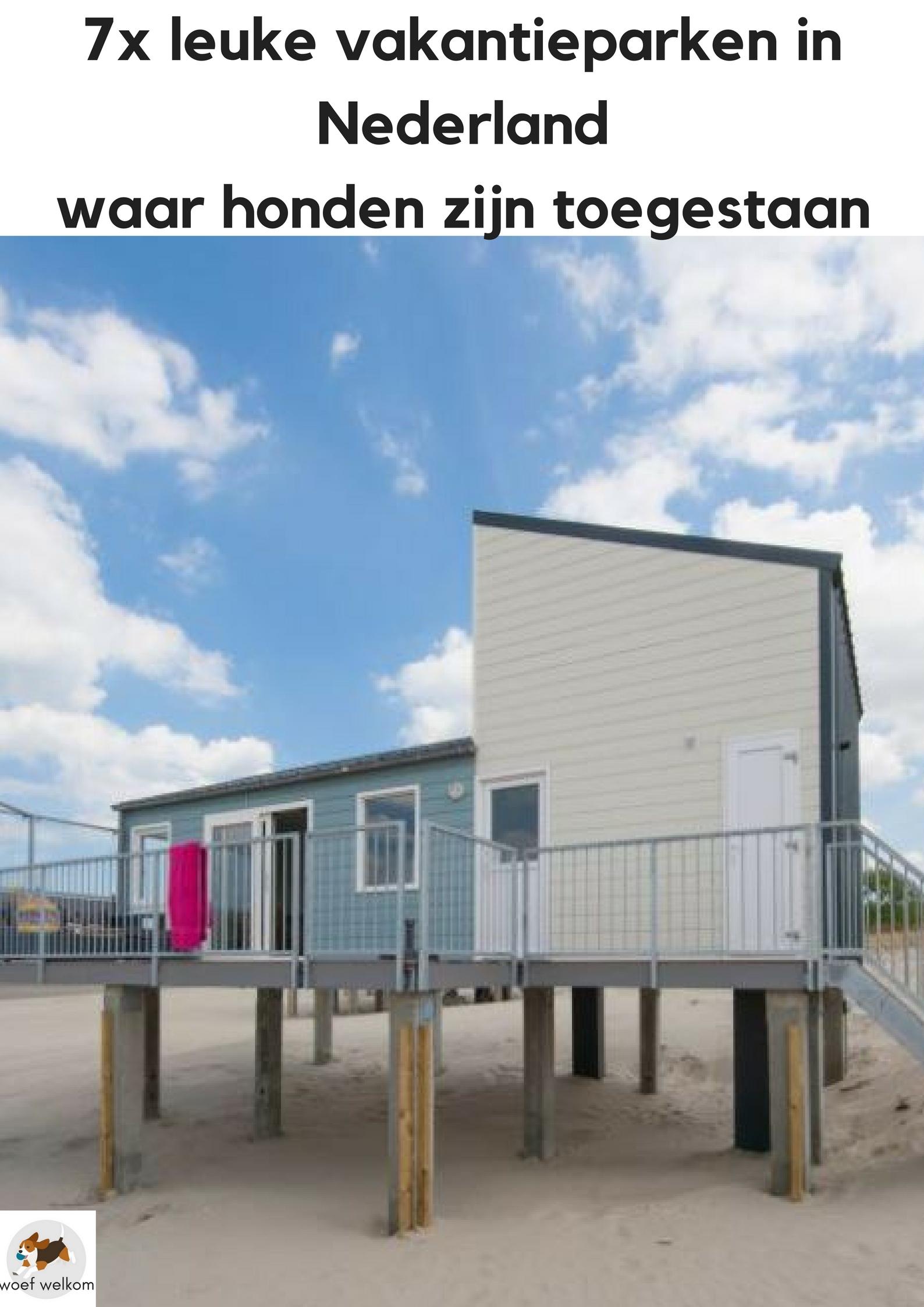 7x leuke vakantieparken in Nederland waar honden zijn toegestaan - Woef Welkom
