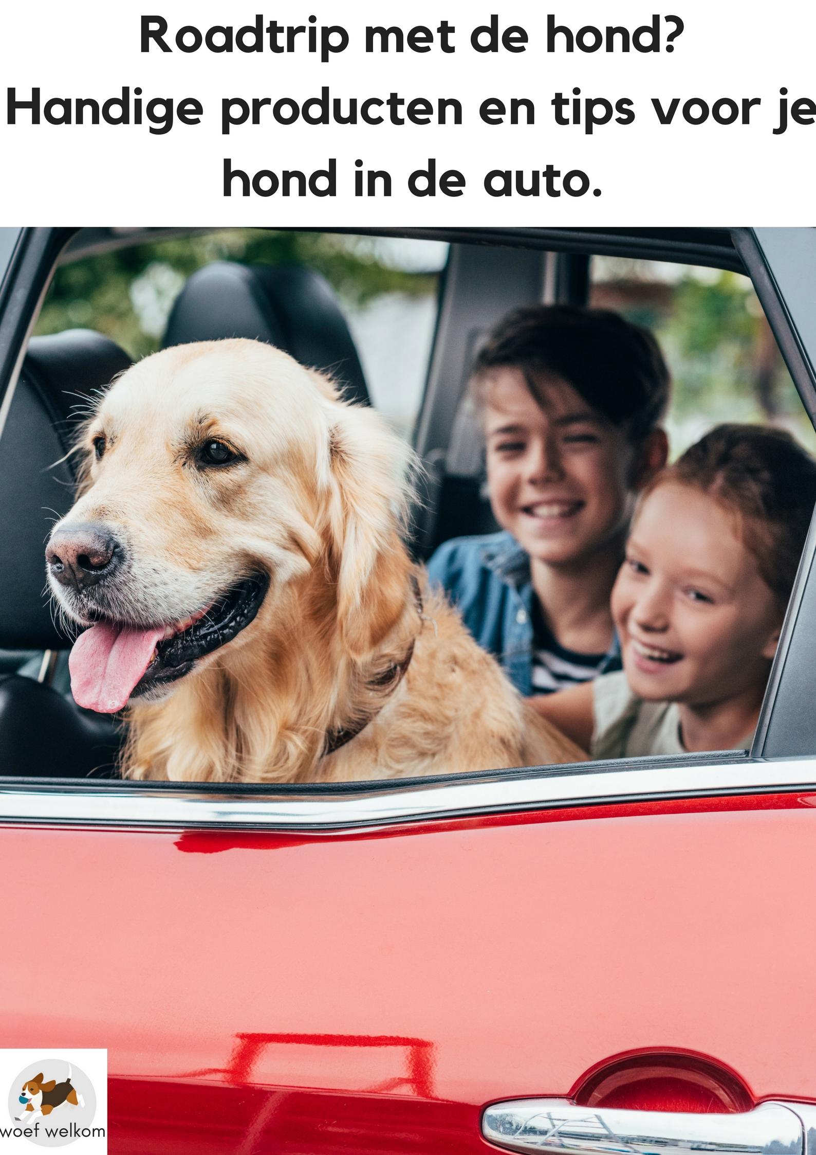 Roadtrip met de hond? Handige producten en tips voor je hond in de auto - Woef Welkom