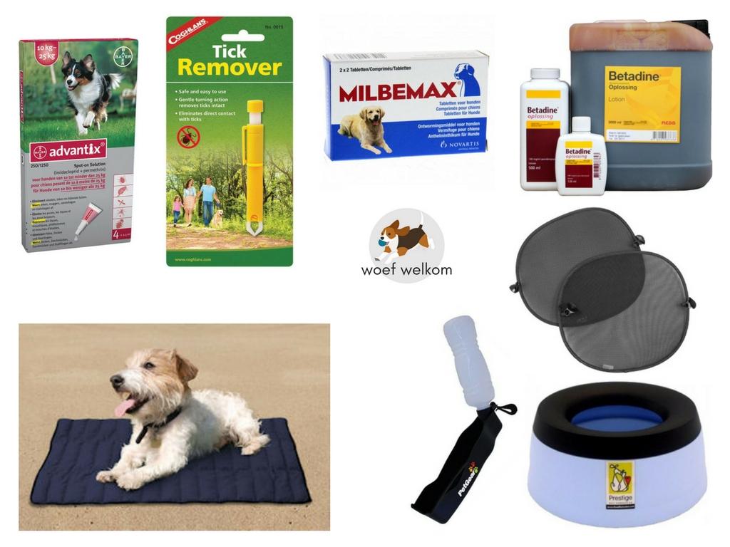 Met deze 8 producten gaat je hond gezond mee op reis - Woef Welkom