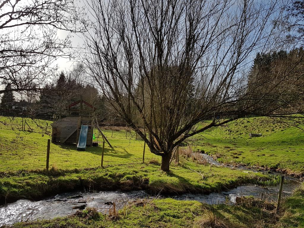 accommodatie Ardennen met hond - Woef Welkom