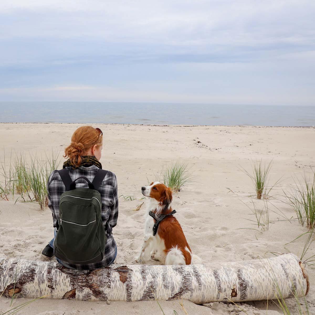 Met de hond naar het strand in Skåne in Zweden