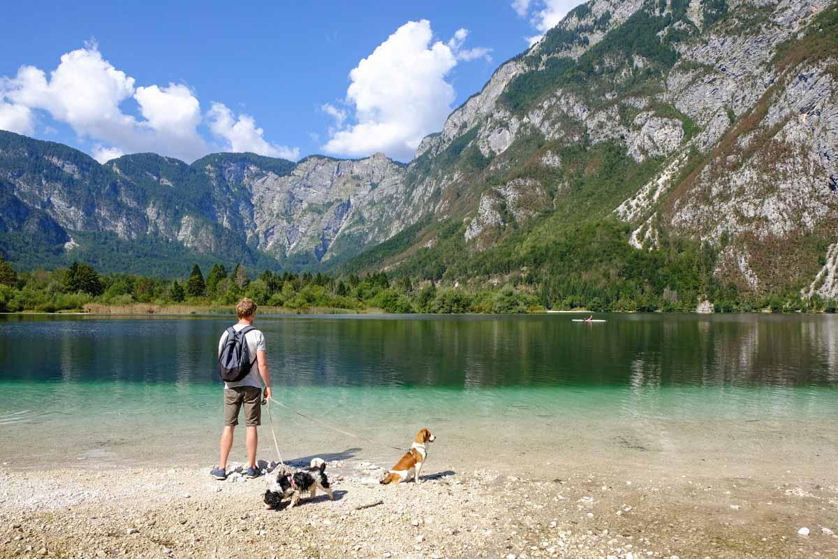 Met de hond naar Slovenië en Kroatië - Woef Welkom