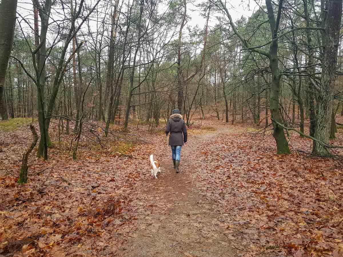 Met de hond naar Landal Miggelenberg [onze ervaring] - Woef Welkom