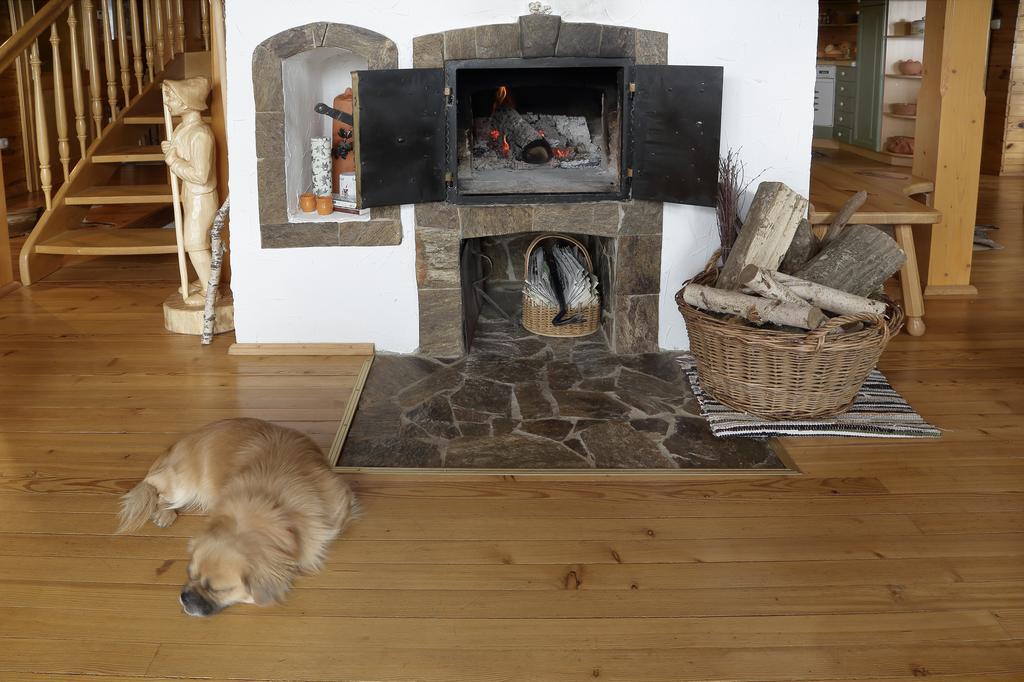 15x leuke accommodaties in Slovenië met je hond - Woef Welkom