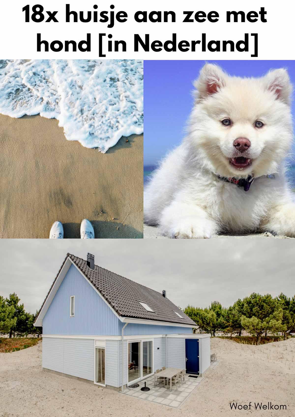 18x huisje aan zee met hond - Woef Welkom