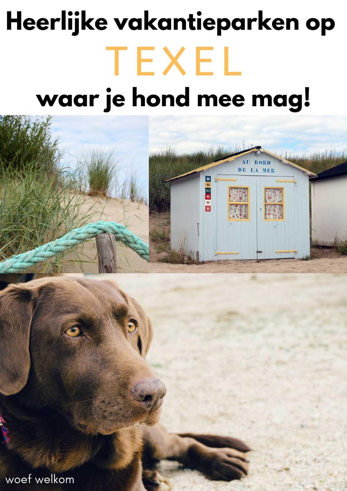 Heerlijke vakantieparken op Texel waar je hond mee mag - Woef Welkom