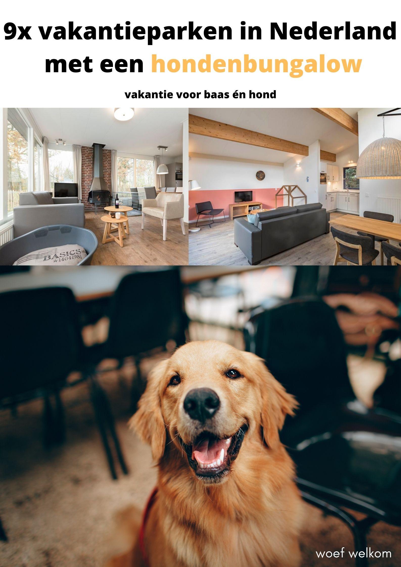 9x vakantieparken in Nederland met een hondenbungalow!