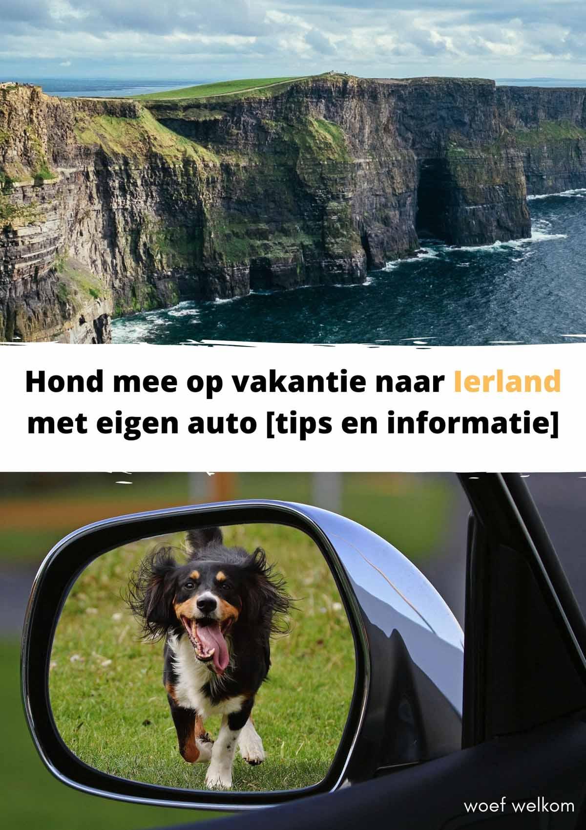 Hond mee op vakantie naar Ierland met eigen auto [tips en informatie]