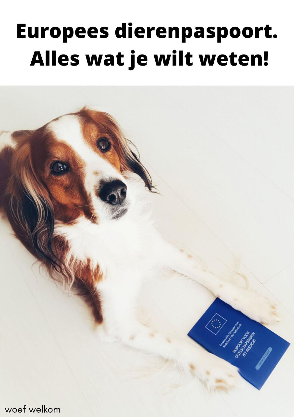 Europees dierenpaspoort 2020. Alles wat je wilt weten.