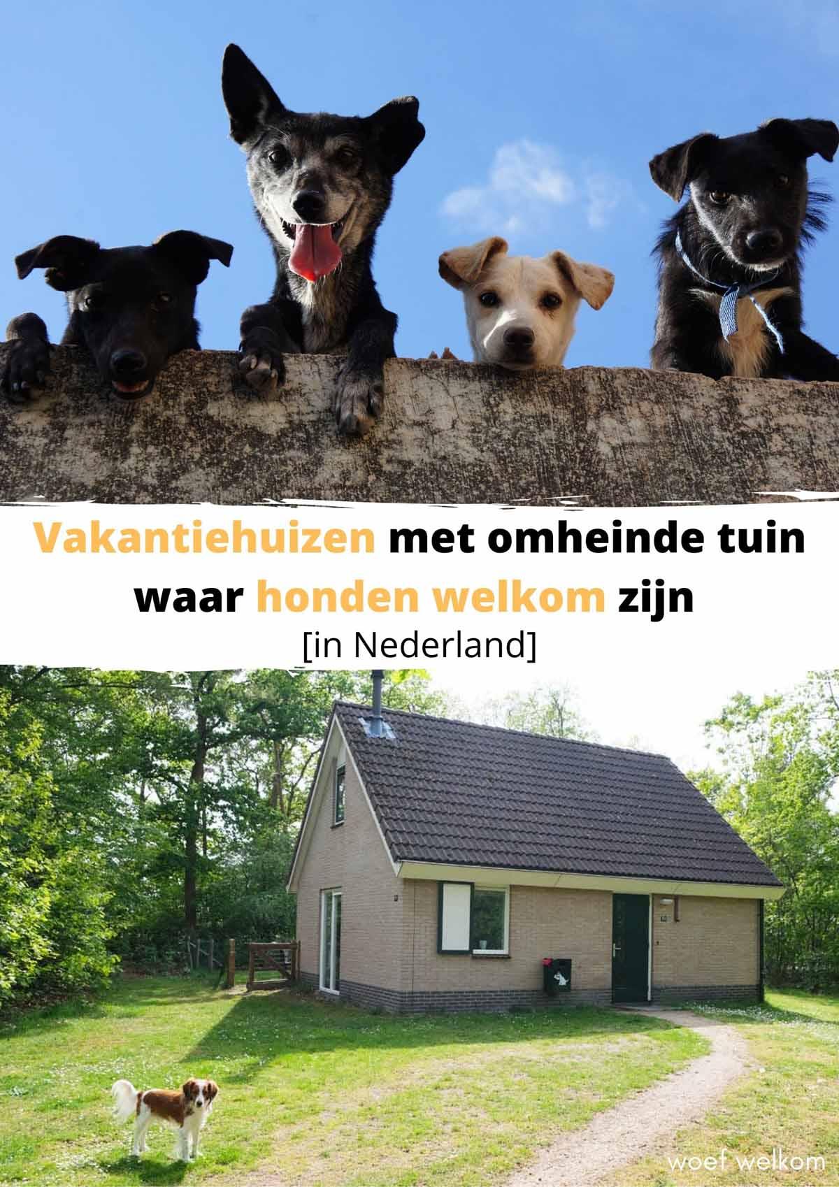 Vakantiehuizen met omheinde tuin waar honden welkom zijn [in Nederland]