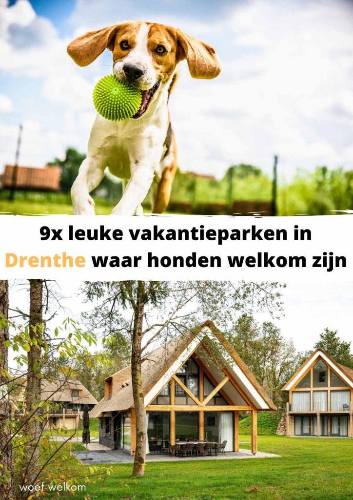 9x leuke vakantieparken in Drenthe waar honden welkom zijn